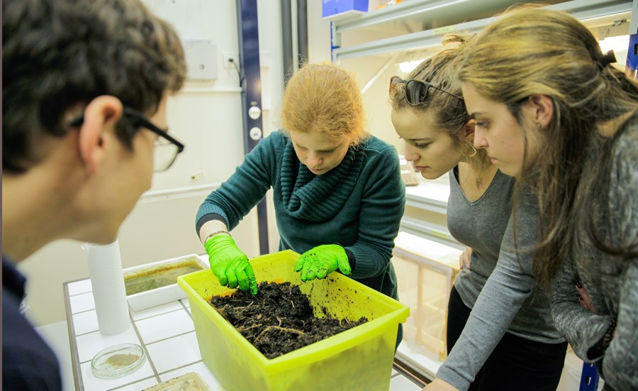 Students learn about ecotoxicology
