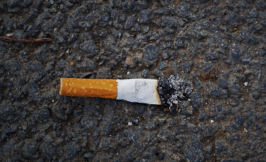 How toxic are cigarette butts?