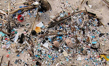 Info sheet on microplastics in the environment